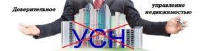 Доверительное управление недвижимостью и УСН