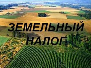 Земельный налог 2019 год