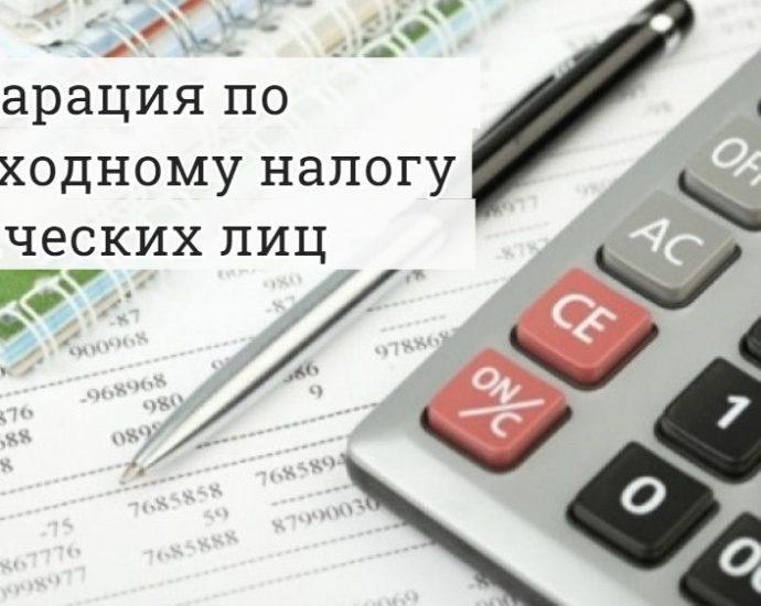 Декларация по подоходному налогу